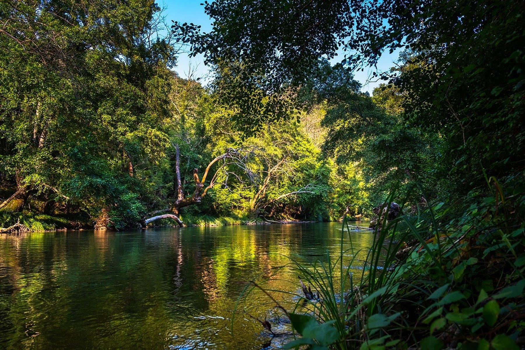 Iquitos Amazon tour